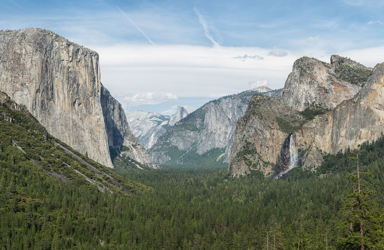 """Child Infected By """"The Plague"""" After Camping in Yosemite ..."""